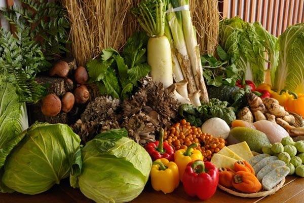 四季各有特色的严格挑选食材