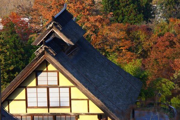 지붕잇기의 시골 가을