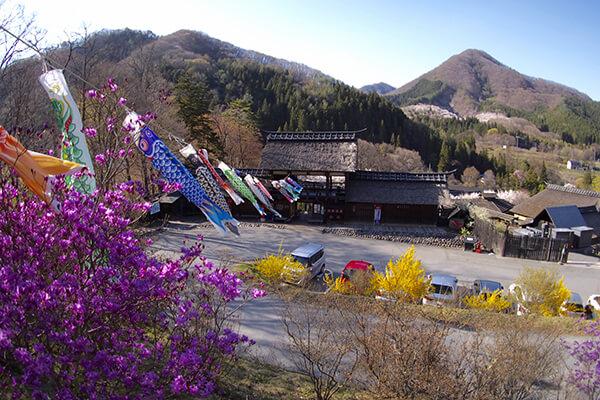 从satsuki节4月起在5月举行